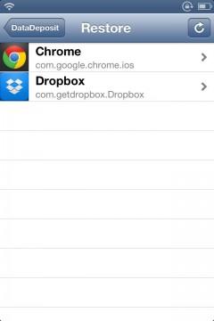 datadeposit-support-new-api-08