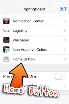 howto-fix-activator-home-button-triple-click-05