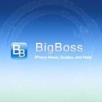 BigBossリポジトリは正常で安全である、とSaurik氏より報告 [JBApp]