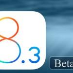 開発者向けに「iOS 8.3 Beta 3」がリリース。前回から17日、iOS 8.2から3日後
