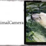 MinimalCamera - カメラアプリのボタン類などを非表示にする