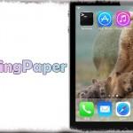 SpringPaper - ホーム画面の壁紙を一定時間ごとに自動で変更!