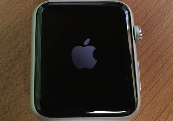pip-elekiban-buy-applewatch-review-05