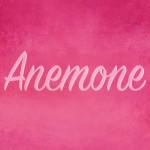 CoolStar製テーマ変更アプリ「Anemone」正式版がBigBossからリリースへ [JBApp]