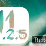 開発者向けに「iOS 11.2.5 Beta 6」をリリース、Beta 5から6日後