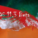 iOS 11.3 ベータ版のSHSHが発行終了、正規手順でのiOS 11.3.1以下への復元が全て不可に