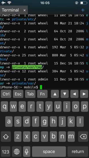 ios-terminal-app-newterm2-vs-mterminal-pwn20wnd-20190324-2