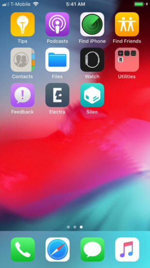 upcoming-electra-for-ios12-jailbreak-coolstar-dev-start-20190304-3