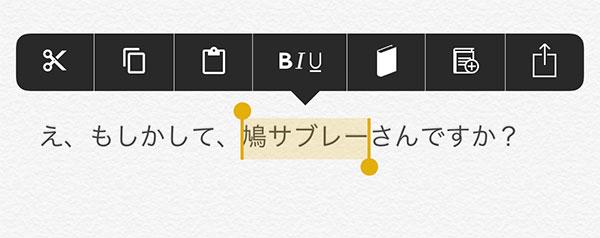 jbapp-menusupport-3