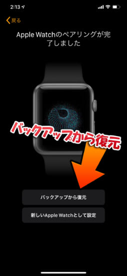 jbapp-activate-ecg-all-applewatch-japan-and-more-7