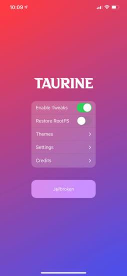 update-taurine-v105-ios14-143-jailbreak-fix-amfid-crash-and-add-bsod-2
